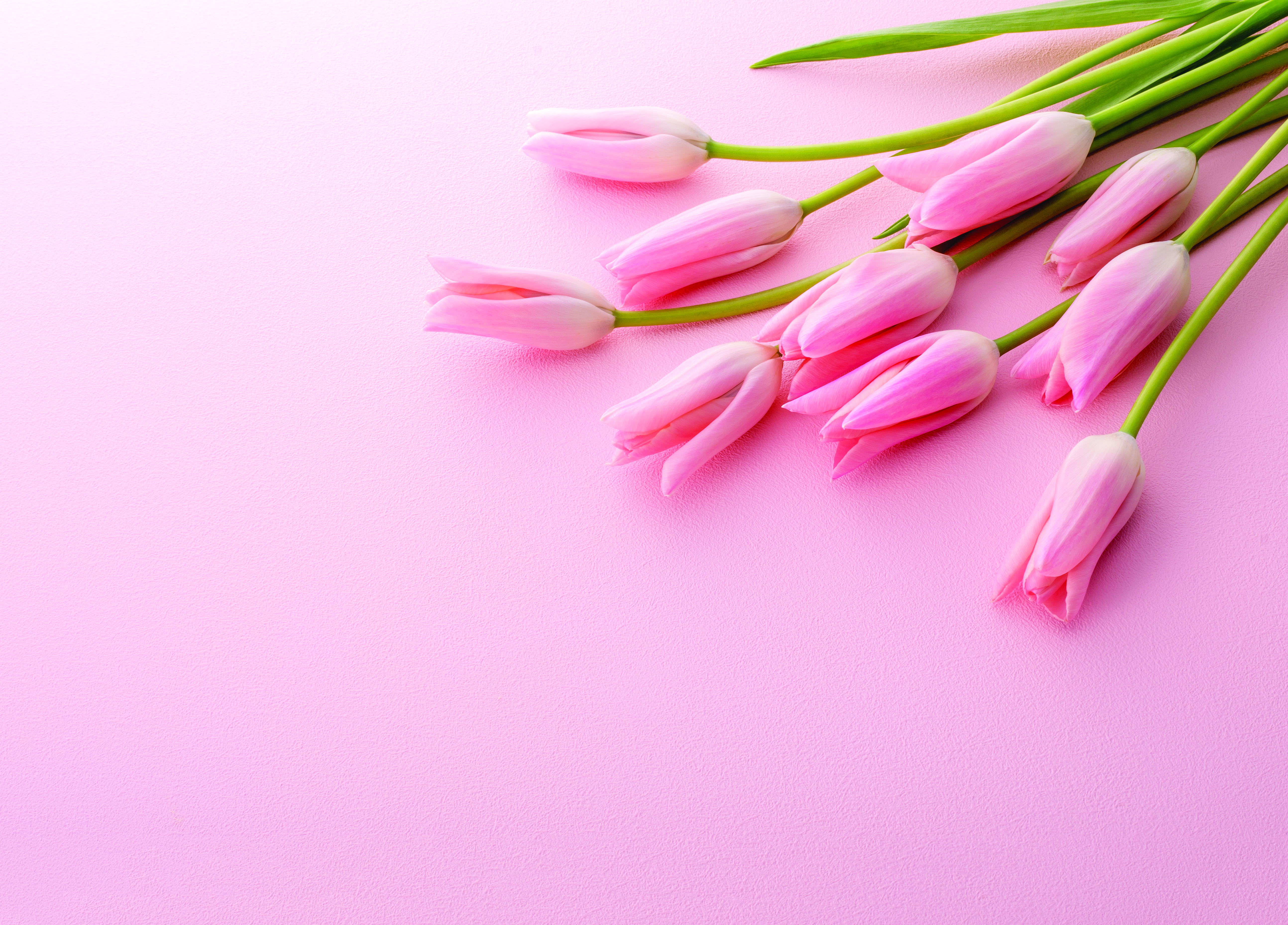 Special Mother's Day Prayer | Articles | Sagemont Church | Houston